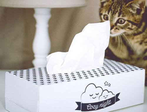 diy accessoires - creer boite mouchoirs - papeterie